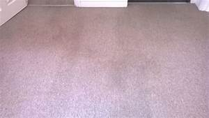 Carpet Cleaning Why Choose A Professional