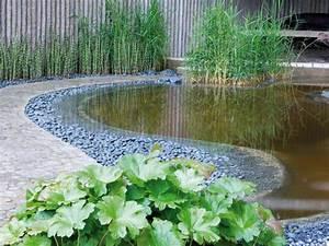 Plante Pour Bassin Extérieur : plante de bassin 19 id es pour d corer votre petite oasis ~ Premium-room.com Idées de Décoration