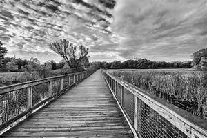 Nature Photography Black And White With Color   www ...