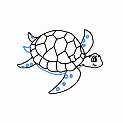 Turtle Sea Drawing Draw Easy Step Tutorial