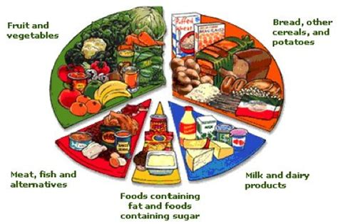 5 food groups on food groups my plate and 135 | 39751d03cbd6452d0ed8b0efb27ad7e4
