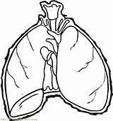Lungs Human Drawing Coloring Clipartmag sketch template