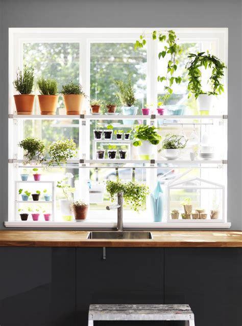 Kitchen Window Herb Garden by Herb Garden In The Window Garden Tea