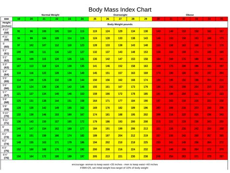 body mass index chart  adults  printable