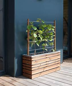 Jardinière Avec Treillis Pas Cher : jardini re bois rectangle ligne z 100 avec treillis ~ Dailycaller-alerts.com Idées de Décoration