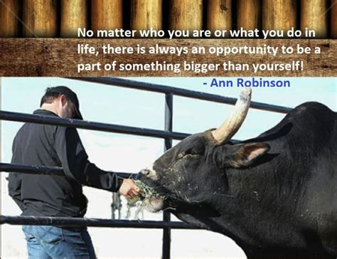 bull rider wife quotes