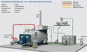 1t  H Steam Boiler For Factory Production