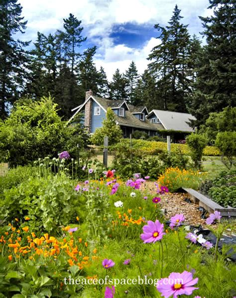 orcas island cottages oh the cottages i ve seen the ace of space