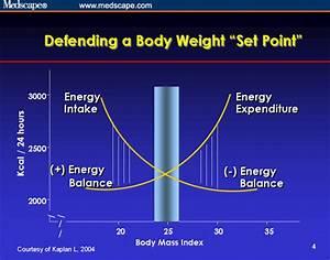 """Set Point"" Vs. Dieting Virtually Guarantees Failure ..."