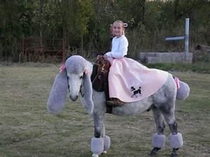 Braymere Custom Saddlery  Poodle Horses