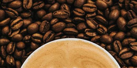 See restaurant menus, reviews, hours, photos, maps and directions. World Traveler Coffee Roasters - Roseville Yellow Pages