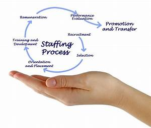 Diagram Of Employee Selection Process  U2014 Stock Photo  U00a9 Vaeenma  152372694