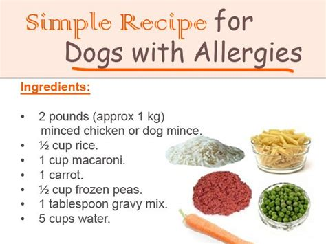 simple recipe  dogs  allergies pets  dog