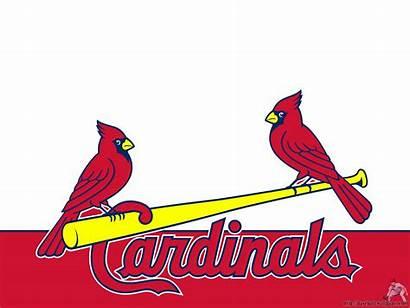 Cardinals Louis St Vector Baseball Stl Cliparts