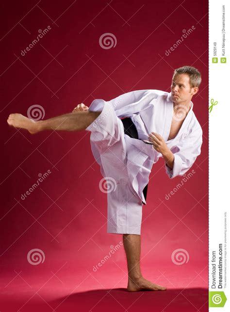 karate black belt kicking royalty  stock images