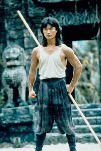Robin Shou as Liu Kang. I'm too old for this to still be ...