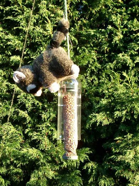 squirrel proof bird feeder pole diy birdcage design ideas