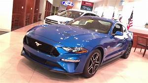 Pony Special!! A 2019 Mustang GT in Velocity Blue!! - YouTube