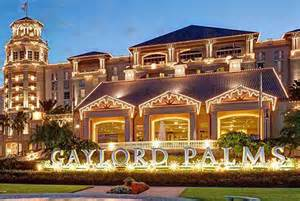 3 Bedroom Suites In Orlando by Christmas At Gaylord Palms Orlando Water Park Hotels Orlando