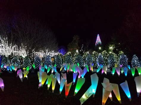 lights in asheville nc enjoying the winter lights at nc arboretum asheville