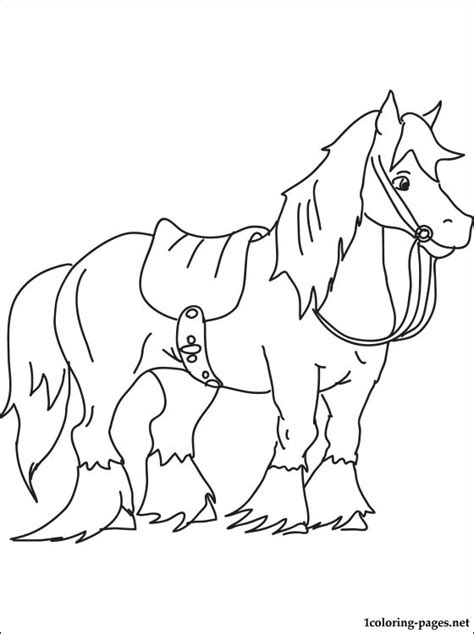 angus horse coloring page coloring pages