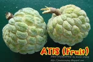 Atis Fruit