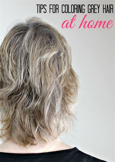 best home hair color for gray tips for coloring grey hair at home coloring home and