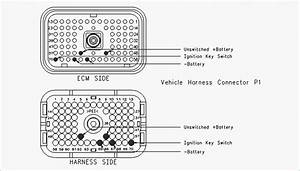 Cat C7 Serpentine Belt Diagram
