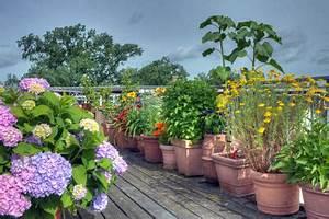 Pflanzen Für Dachterrasse : eine dachterrasse sorgf ltig und gr ndlich planen ~ Bigdaddyawards.com Haus und Dekorationen