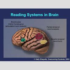 Dyslexia As A Hidden Disability  About Dyslexia  Foundations Tutoring
