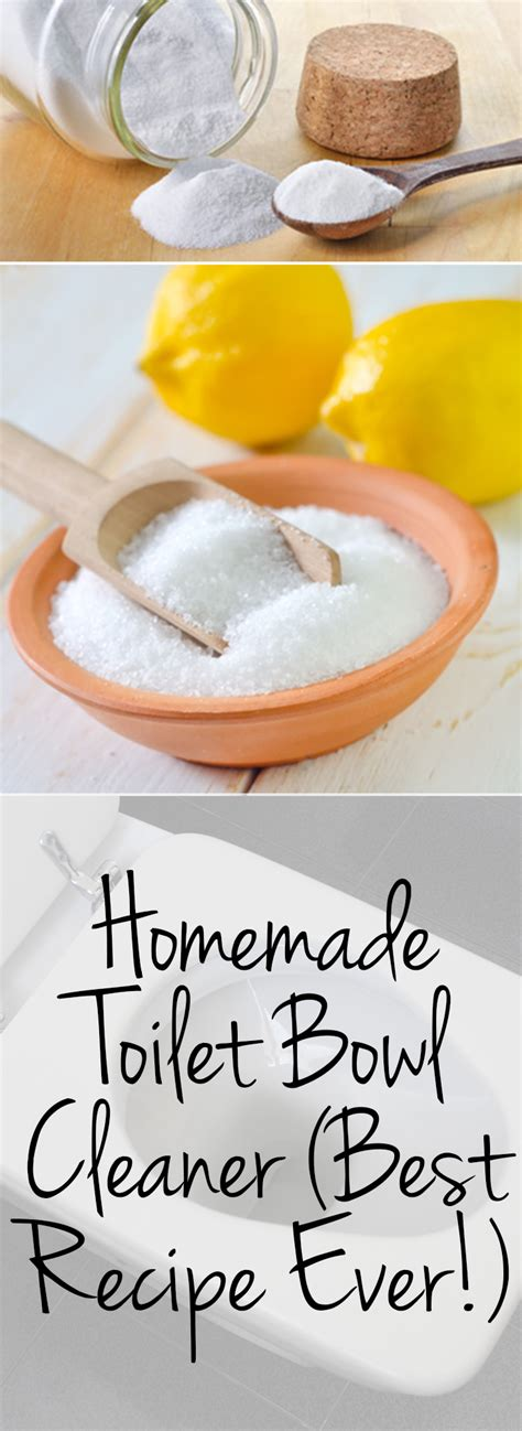 Homemade Toilet Bowl Cleaner {best Recipe Ever!}  Page 5