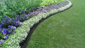 Ideas for small garden borders
