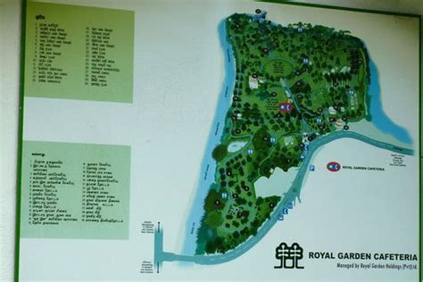 Botanischer Garten Kuala Lumpur by Sri Lanka Reisebericht Quot Kandy Botanischer Garten Quot