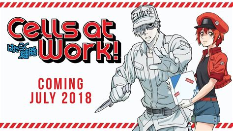 cells  work trailer  youtube