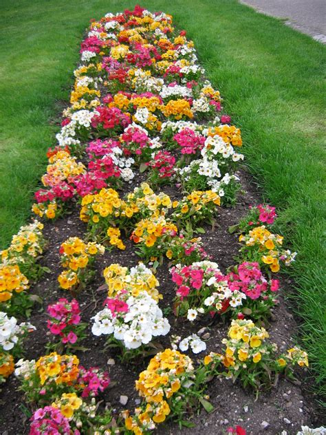 bed with flowers flower bed designs flower beds and bed designs on pinterest