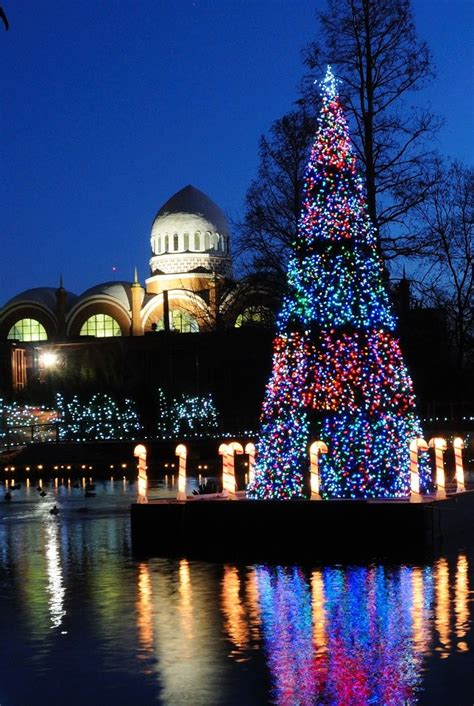 Festival Of Lights Cincinnati Zoo Christmas Pinterest