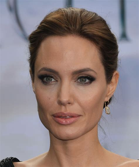 Angelina Jolie Straight Formal Updo Hairstyle   Medium
