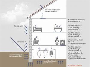Feuchtigkeit In Der Wand : wie kommt das wasser in die wand merkel ingenieurgesellschaft mbh ~ Sanjose-hotels-ca.com Haus und Dekorationen