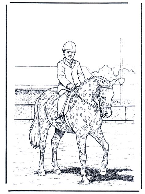 dressur ausmalbilder pferde