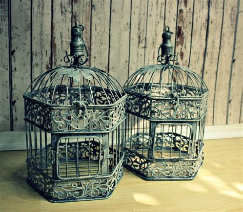Vintage Bird Cages For Sale, Cheap. Case Design. Calacatta Quartz. Glass Ball Pendant Light. Kraftmaid Vanity. Library Ladder. Mid Century Coffee Tables. Shower With Bench. Modern Pendant Light