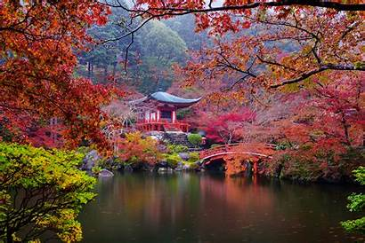 Japanese Garden Autumn Fall Pagoda Bridge Background