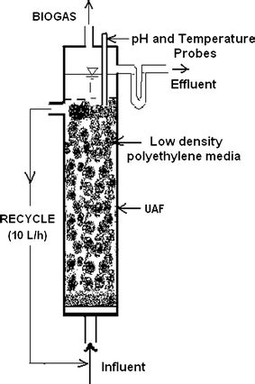 Anaerobic treatment of winery wastewater in fixed bed
