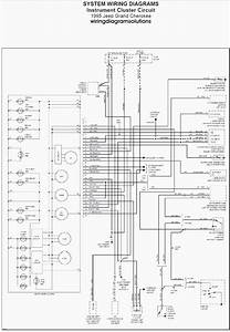 1998 Jeep Wrangler Wiring Diagram For Radio