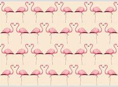 Flamingo Wallpapers Wallpaper Cave