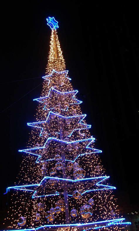 xaver s christmas tree