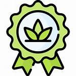 Organik Organic Icon Sushi Genova Icons