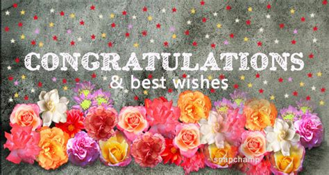 congratulations   wishes   wishes