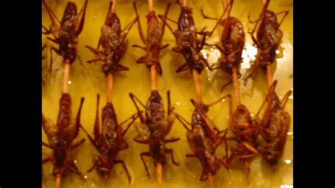 essen fingerfood chinesisches essen in china fingerfood finger food