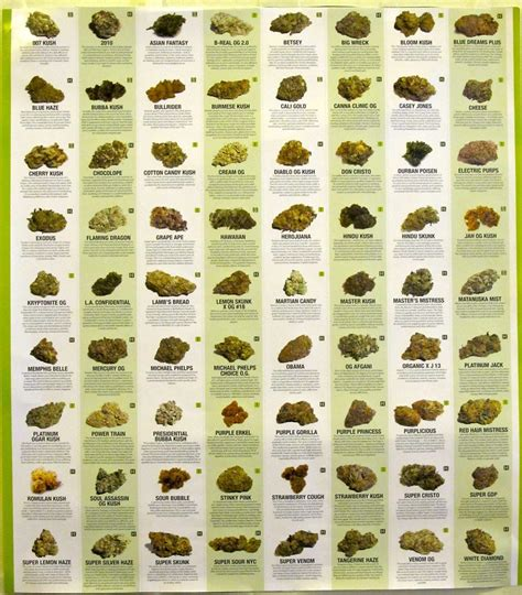 variety names different types of kush names www imgkid com the image kid has it