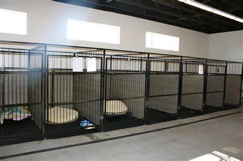 dog cat boarding dog grooming doggy daycare boise id emerald street kennels